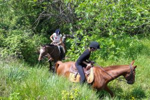 sports360-finale-ligure-equitazione-easy-horse-center-5