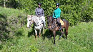 sports360-finale-ligure-equitazione-easy-horse-center-passeggiate-cavallo-33