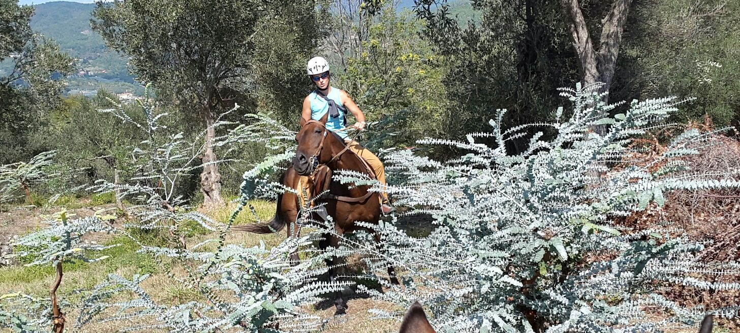 sports360-equitazione-easy-horse-center-finale-ligure-passeggiate-cavallo-liguria