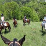 sports360-finale-ligure-equitazione-easy-horse-center-passeggiate-cavallo-12