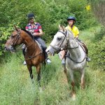 sports360-finale-ligure-equitazione-easy-horse-center-passeggiate-cavallo-26